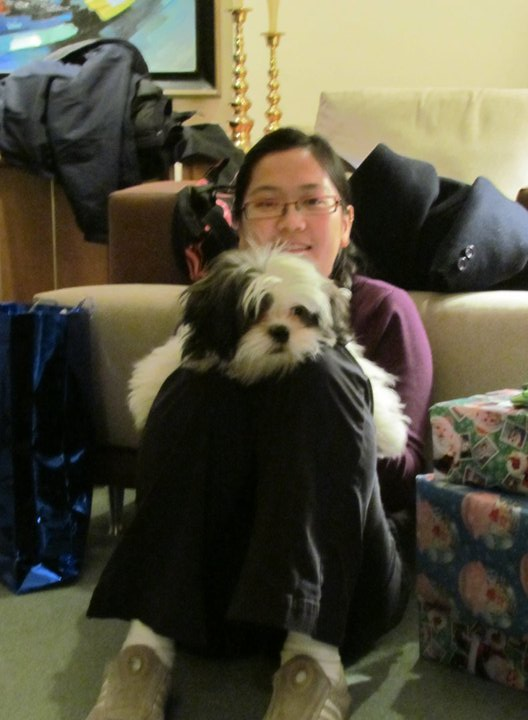 Chanh Shih Tzu and Bo