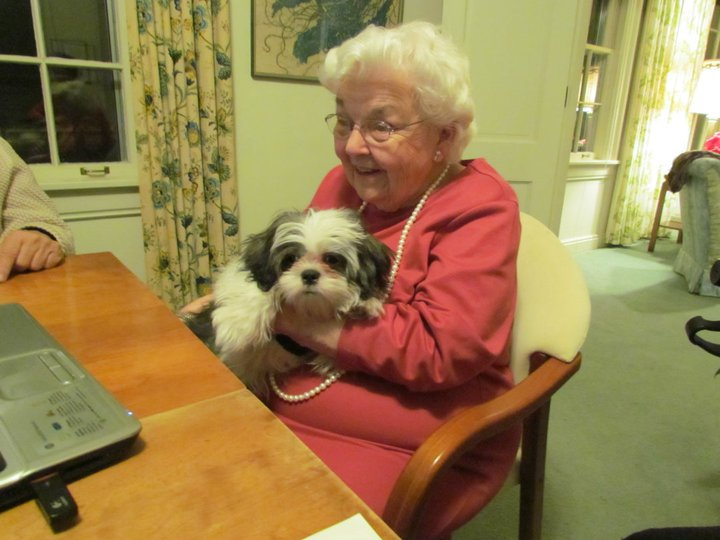 Helen and Chanh Shih Tzu