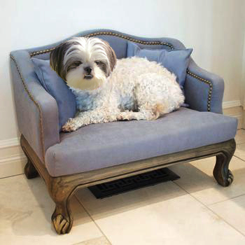 dog chair