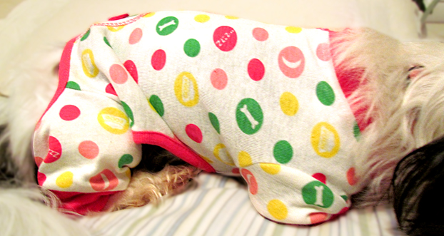 polka dotted dog pajamas