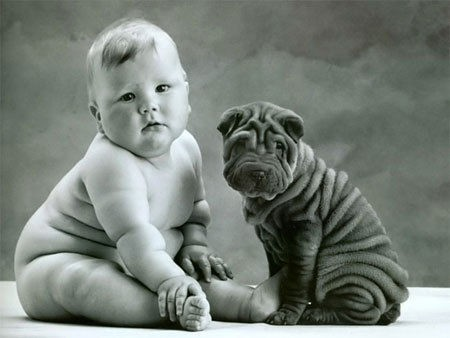 Cute Dog Photo: Wrinkly Shar Pei Puppy with a Baby