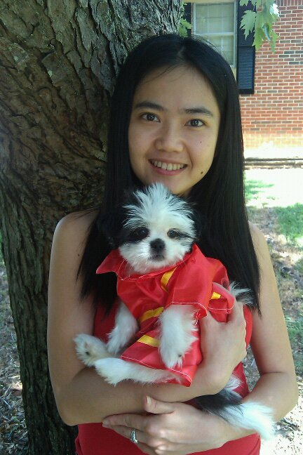 Shih Tzu Puppy in Fireman Outfit