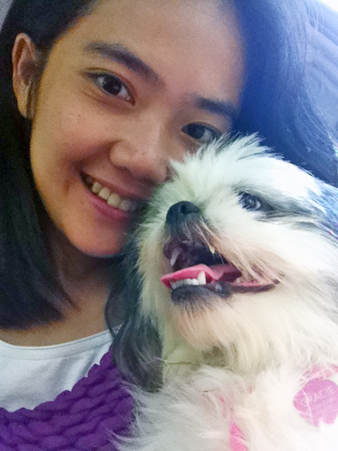Shih Tzu Smiling