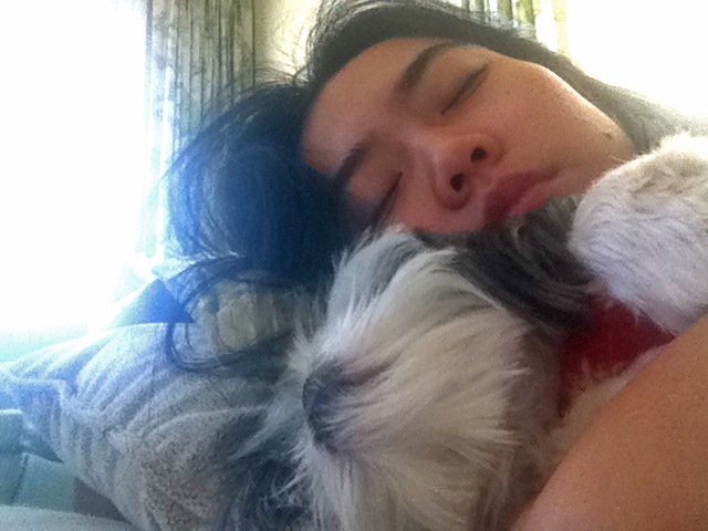 Shih Tzu Puppy and Owner Snuggling Together