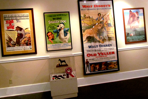 Movie Posters Dog Films