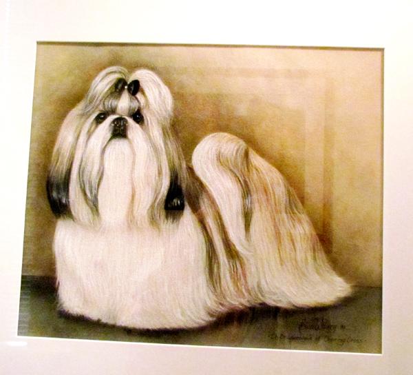 Shih Tzu Dog Art